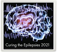 Curing Epilepsy: Focus on the Future – Patient Feedback